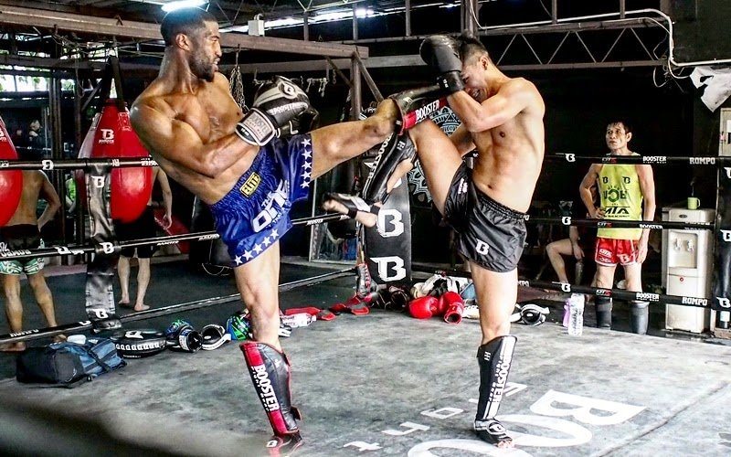 best muay thai shin guards